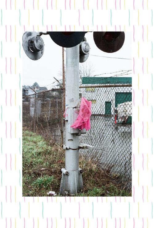 pinkumbrella_500