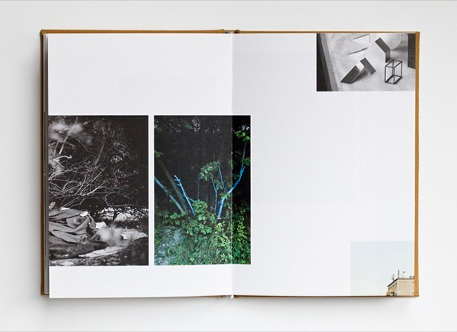 Puklus_Handbook_Book_007