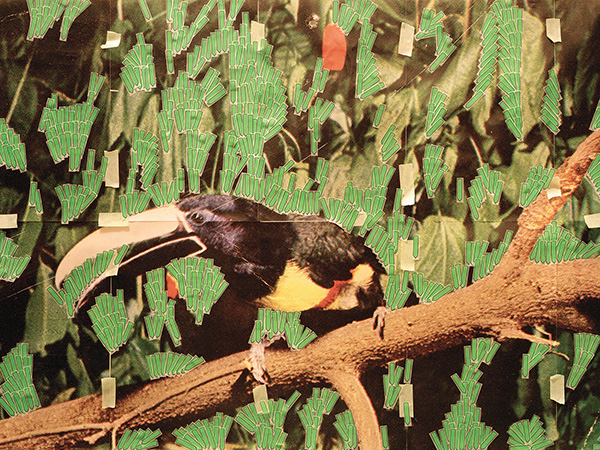 Toucan in Nature (Post it notes), 2013,