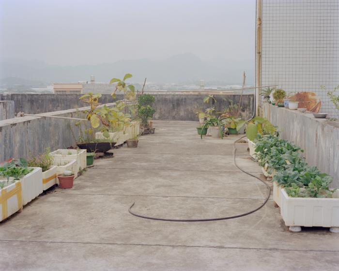 Jiehao-Su-Borderland-09