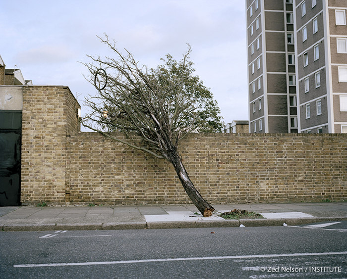 "From the series: ""Hackney - A Tale of Two Cities"""