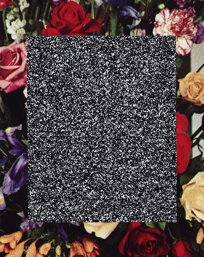 flower_lazaruspit_300dpi