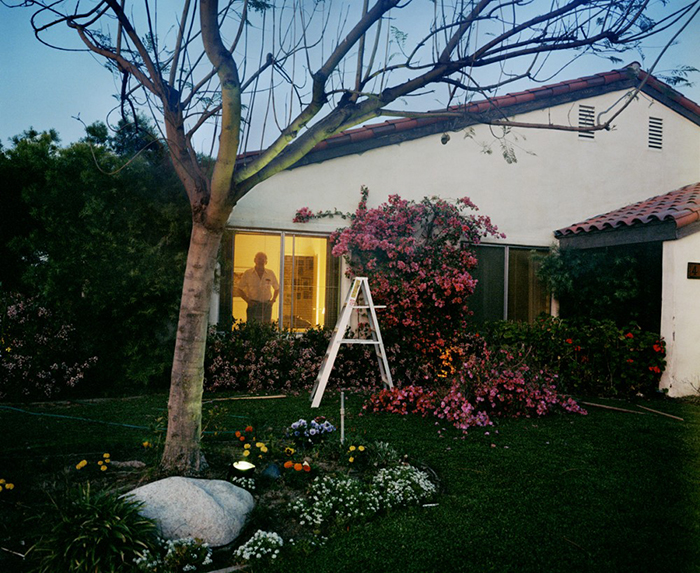 Larry Sultan Pictures From Home