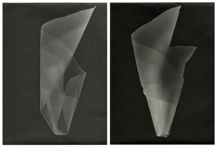 Paper Journal, Tamar Lewinsohn