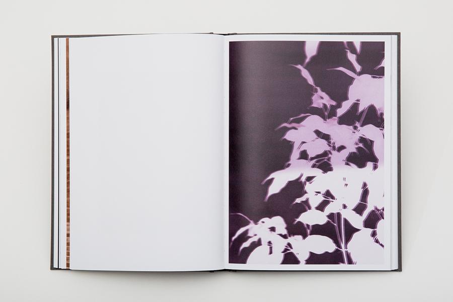 Daniel Shea, Bilsner, IL book spread