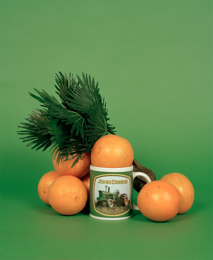 Still life taken by photographer Molly Matalon