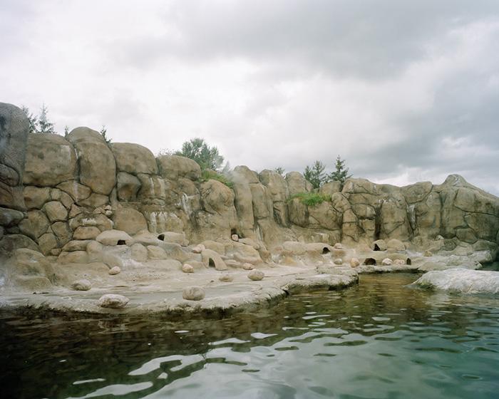 Zoo Penguins no water 001