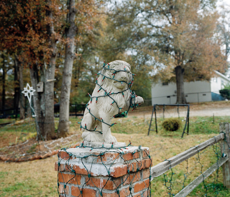 An outdoor lion statue, with fairy lights wrapped around it