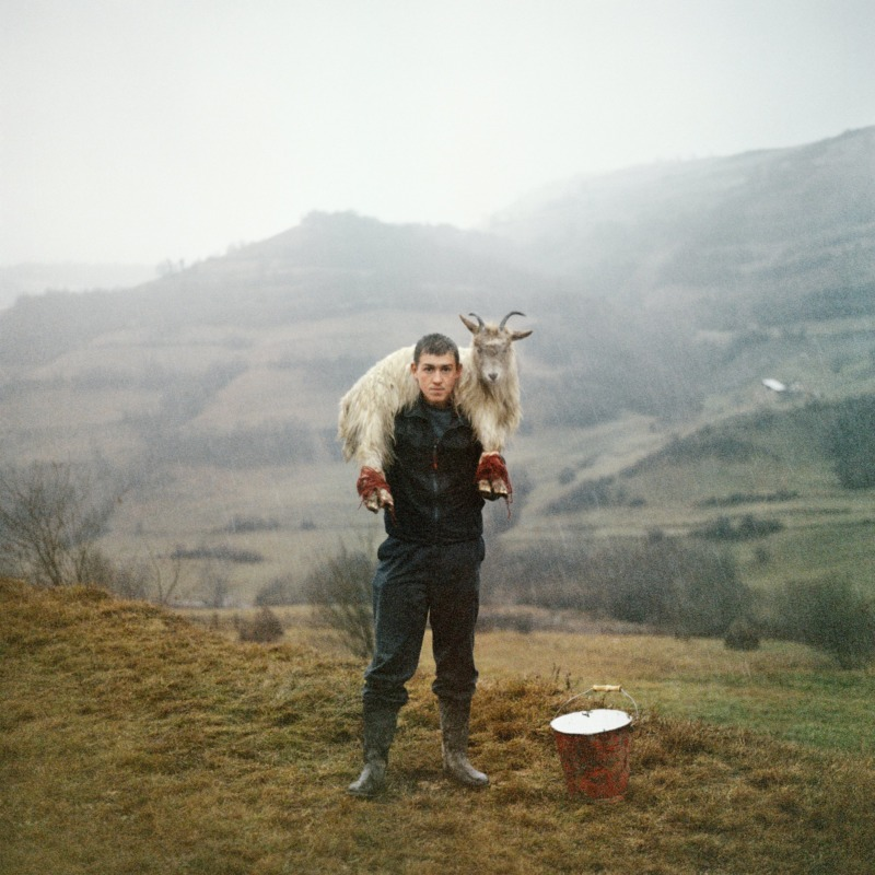 A man stands on a hillside, carrying a dead reindeer slung over his shoulders.